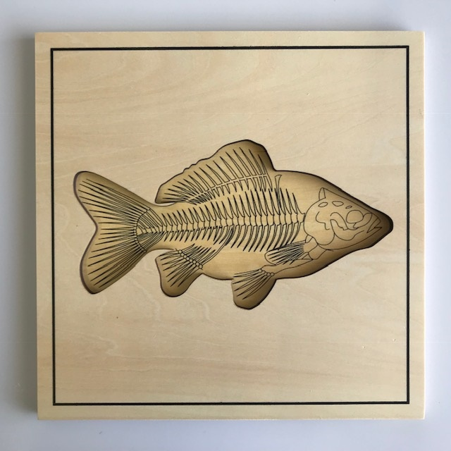 Fish Skeleton Puzzle