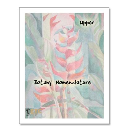 Botany Nomenclature - Upper Elementary
