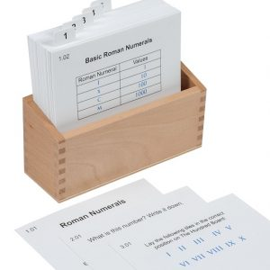 Hundred Board With Roman Numerals Activity Set
