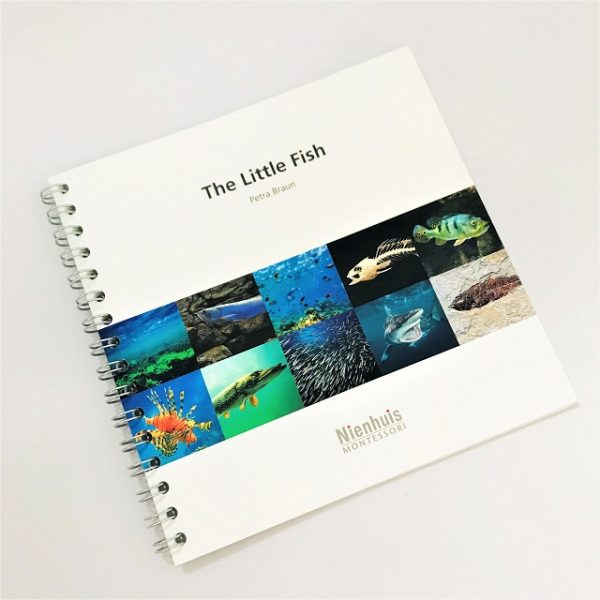 The Little Fish Book