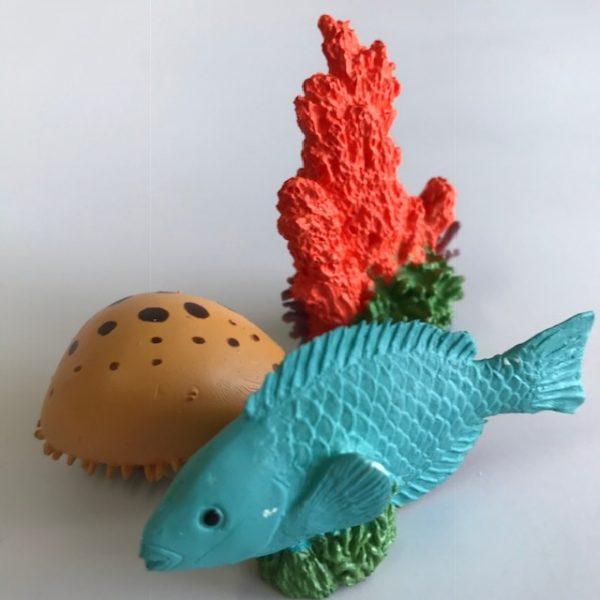 Coral Reef TOOB®