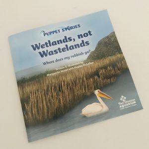 Wetlands, not Wastelands