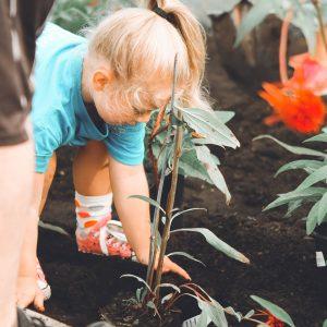 Celebrate Montessori Today and Tomorrow