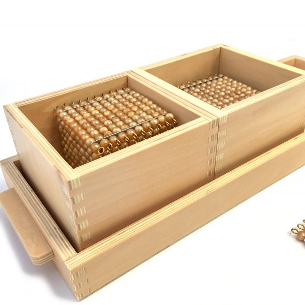 Introduction to Decimal System with Trays