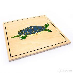 Tortoise Skeleton Puzzle