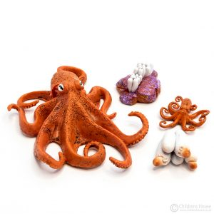 Life Cycle of an Octopus Objects