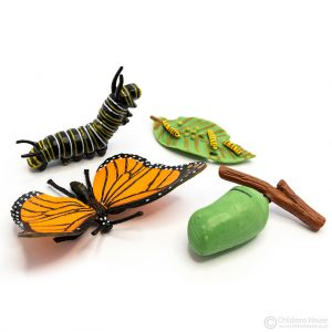 Life Cycle of a Butterfly Objects