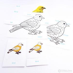 Bird Puzzle Activity Set