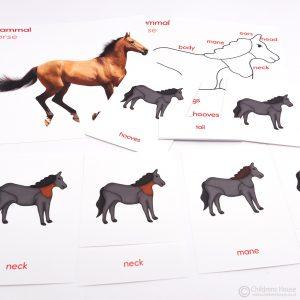 Horse Puzzle Activity Set
