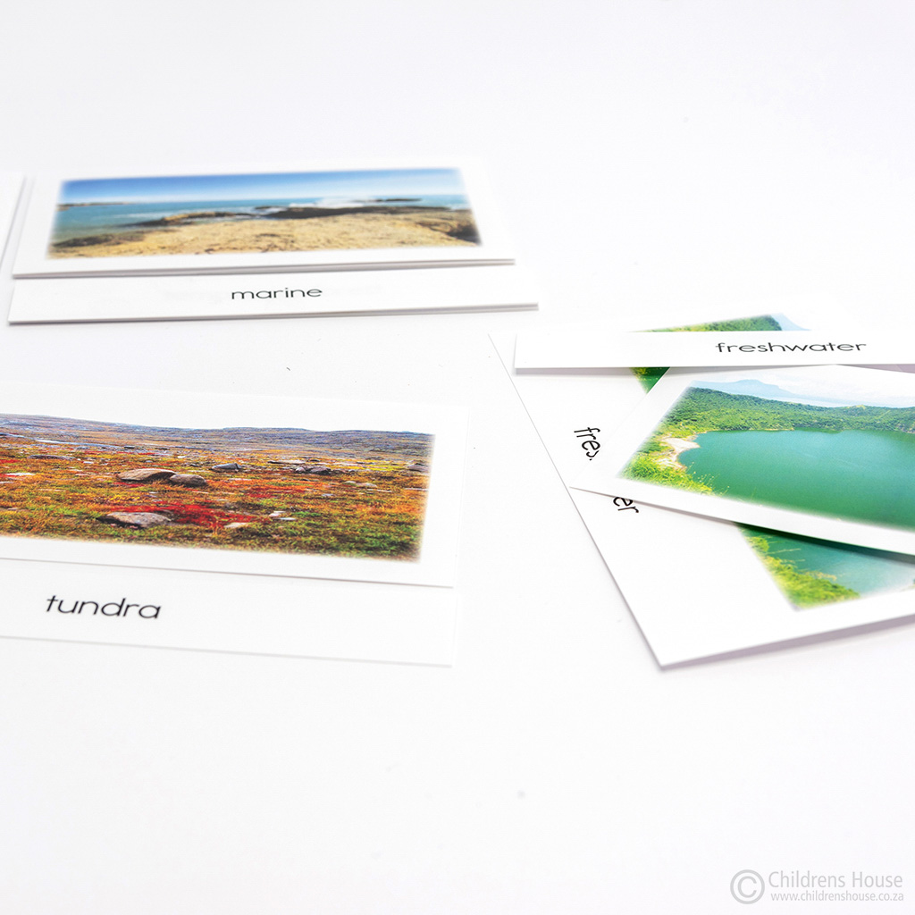 World Biomes - 3 Part Cards